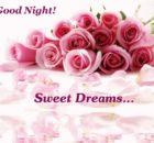 Good Night flower images