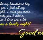 Good night wishes and images
