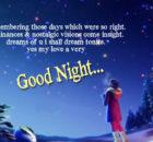 Good night wishes for boyfriend or girlfriend