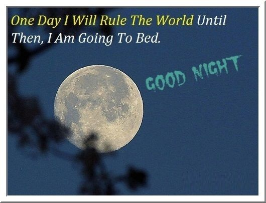Funny Goodnight Texts Images